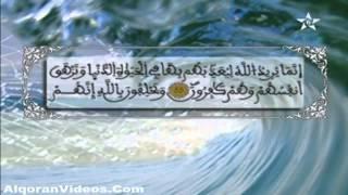 HD المصحف المرتل الحزب 20 للمقرئ محمد إراوي