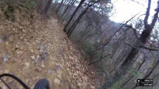 The downhill section of theTuscarora - Bear Wallow Trail.
