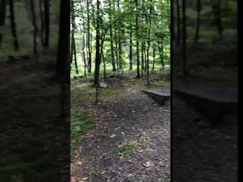 Video Of Cowans Gap, PA