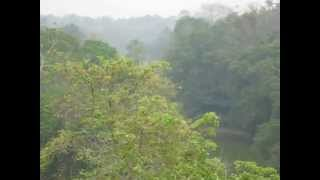 preview picture of video 'Rema-Kalenga Wildlife Sanctuary'