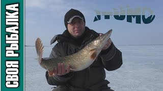 Ловля щуки на водохранилище зимой