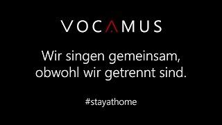 """""""VOCAMUS: Kein schöner Land"""" #stayathome"""