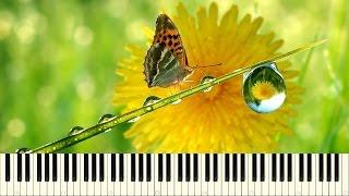 ♪ Kim Yoon: Raindrops (Piano Tutorial)