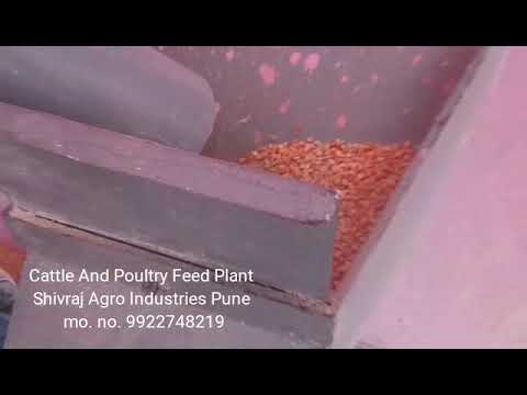 Cattle & Poultry Feed Plant, 500 - 750 Kg/Hr