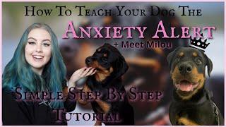 Psychiatric Service Dog Training AT HOME - PTSD, Anxiety, SelfHarm Alert