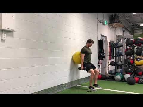 Stability Ball Dumbbell Wall Squat