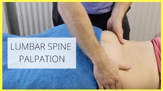 LUMBAR SPINE PALPATION