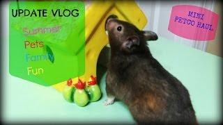 Update Vlog + Mini Petco Haul (Hamster)