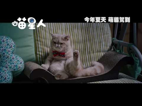 """""""Meow"""" teaser trailer"""