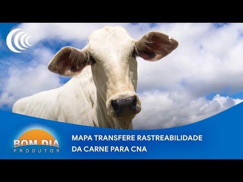 Mapa transfere rastreabilidade da carne para CNA