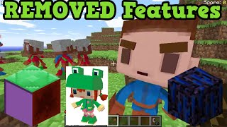 Minecraft Top 5 REMOVED Features of ALL TIME