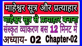 माहेश्वर सूत्र, संज्ञा प्रकरण संस्कृत, प्रत्याहार , Maheshwar Sutr, Siv Sutr, Ctet,tgt,pgt,tet
