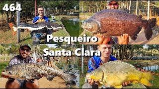 Muitos peixes e muita diversão no Pesqueiro Santa Clara - Fishingtur na TV 464