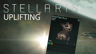 Stellaris - Uplifting Primitive Species