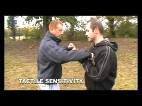 Systema Concepts - Sensitivity
