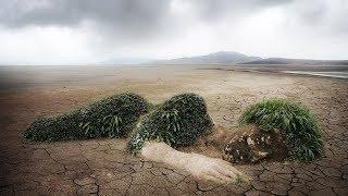 Противоположности. Экологический след: как мы безудержно тратим ресурсы Земли