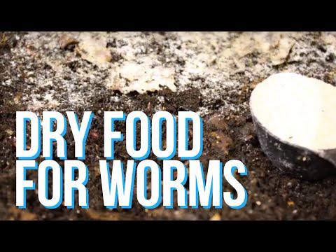 Tablet laban sa mga worm at helmint