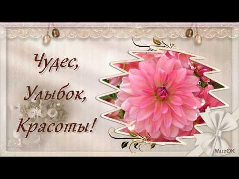 Поздравление с Днём красоты! 9 сентября! музыкальная видео открытка