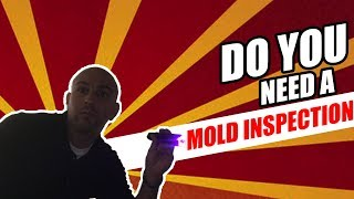 Do You Need A Mold Inspection In A Home You Are Buying?