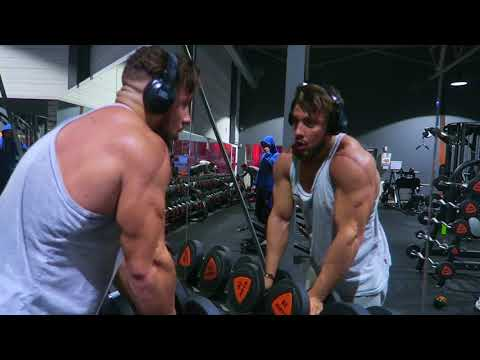 Linnervation les muscles mimiques