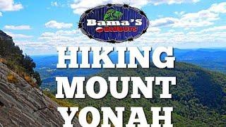 Hiking YONAH Mountain|North Georgia Hikes|Georgia Hiking TRAILS| 4K