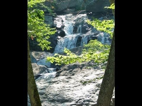 Falls Nature Trail in Autumn