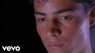 Fuiste Un Trozo De Hielo En La Escarcha - Chayanne (Video)