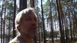 Велопрогулка по лесу 00112. Думаю, что не смогу из-за песка поехать в лес.