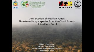 ALMIC 2020 - Conservation of Brazilian Fungi: Threatened fungal species from the cloud forests