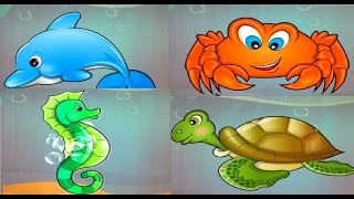 Baby Learn About Sea Animals | Animal Puzzles & Real Video Of The Animals | Educational Games