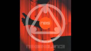 NO-BIG-SILENCE - THE FIXING
