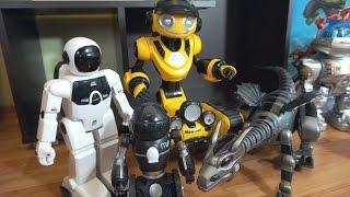 Видео про роботов для детей. Мультики с игрушками
