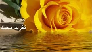 مازيكا احمد المصطفى يوم حبى ويوم هنايا يوم لاقيتهُ حبيب برايا تحميل MP3