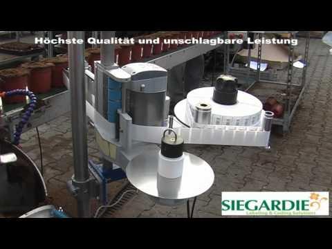 Etiketten und Etikettiermaschinen von Siegardie