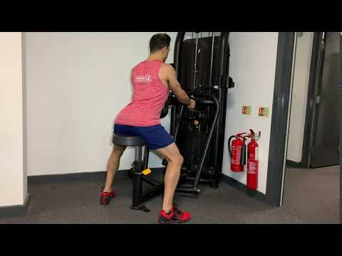 Seated Row Machine (underhand grip)