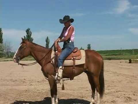 How To Ride Your Horse With Unshakable Confidence!