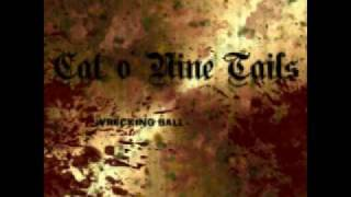 Cat O' Nine Tails - Fallacy of Justice
