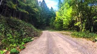 preview picture of video 'MTB Tour Nationalpark Kalkalpen Reichraming - Ebenforstalm'