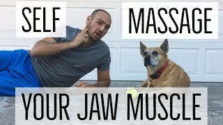 Self Massage Your Masseter (Jaw) Muscle! Crucial for relieving headaches, TMJ, clenching, bruxism