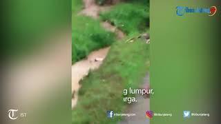 Detik-detik Longsor di Dusun Jetis Kecamatan Leksono Wonosobo, Ketua RT Sempat Tergulung Lumpur