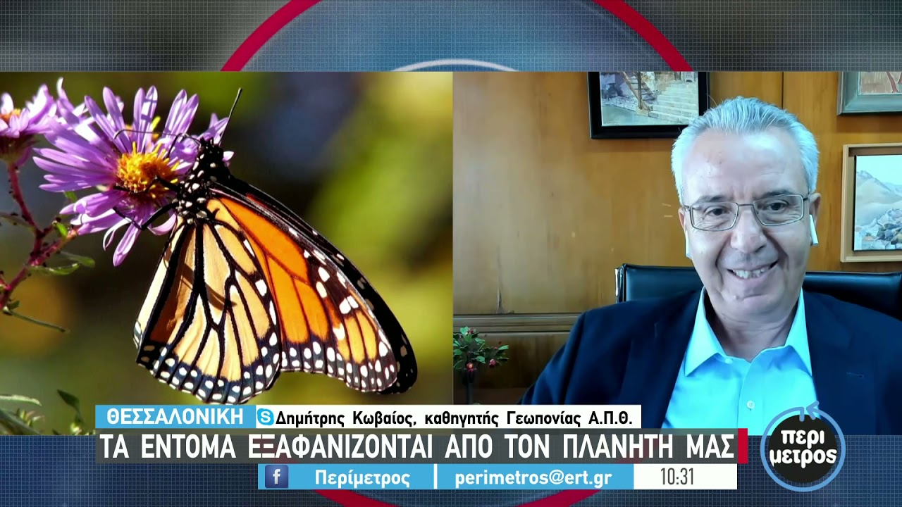 Τα έντομα εξαφανίζονται από τον πλανήτη   23/09/2021   ΕΡΤ