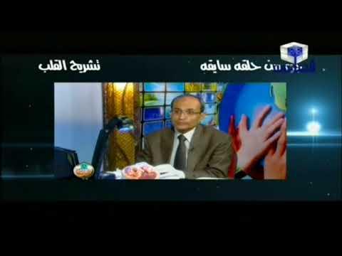 """شرح """" تشريح القلب """" مع أ/ حسن محرم - اخراج ايمان محمد على"""
