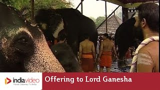 Holy Offering to Lord Ganesha