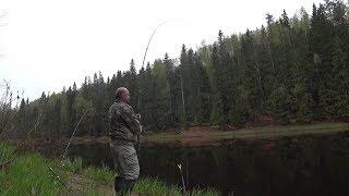 Рыбалка в ленинградской области лужский район