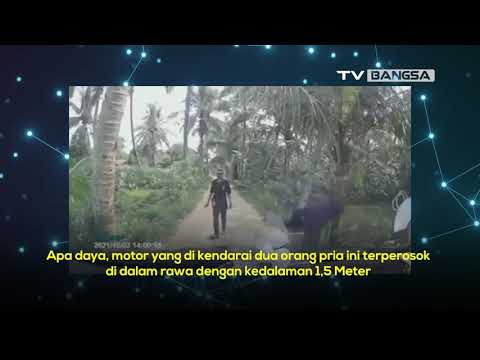 Salip Mobil di Jalanan Sempit, Motor di Bogor Terperosok ke Rawa