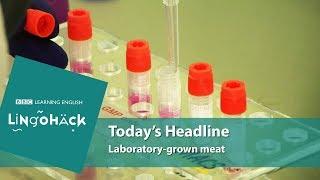 Laboratory-grown meat - Lingohack