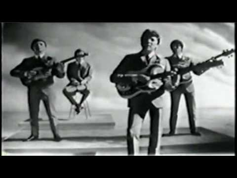 What Have They Done To The Rain (1964) (Song) by The Searchers