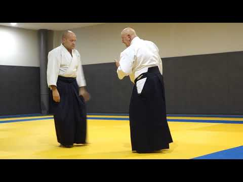Aikido G Beets BF part1