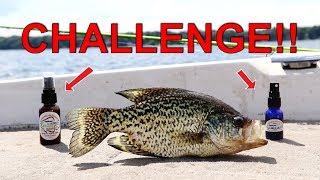 Best Scent for Crappie?! | Slabsauce VS G-Sauce Challenge