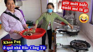 Sam Trứng Biển, Tôm Tít Cháy Tỏi, Bạch Tuột Nhúng Mẻ - Khoa Pug Ăn Hải Sản Thăm Nhà Hắc Công Tử ^^!